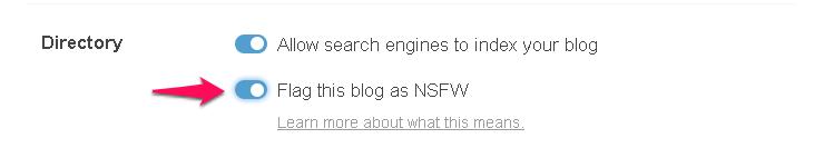 Make your Tumblr blog NSWF